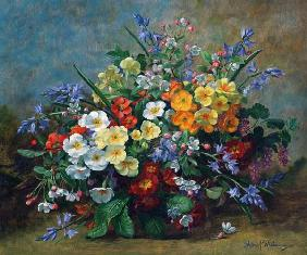 AB.130.Yellow, white and orange primulas with bluebells in a vase