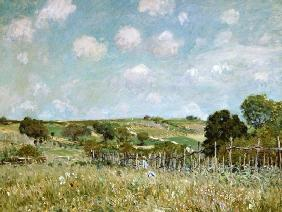 The Meadow. 1875