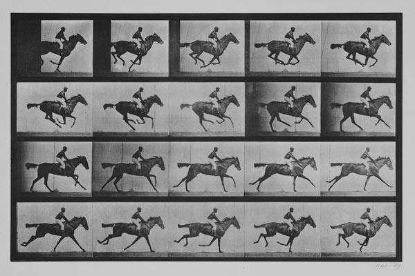 "Jockey on a galloping horse, plate 627 from ""Animal Locomotion"" 1887"