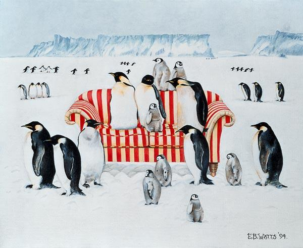 Penguins on a red and white sofa