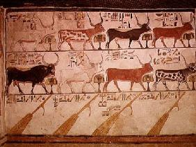 The seven celestial cows and the sacred bull and the four rudders of heaven, from the Tomb of Nefert