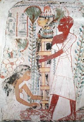 Preparing a mummy for a purification ceremony, from a tomb at Thebes, New Kingdom