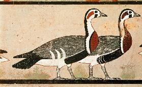 Meidum geese, from the Tomb of Nefermaat and Atet, Old Kingdom C27th BC