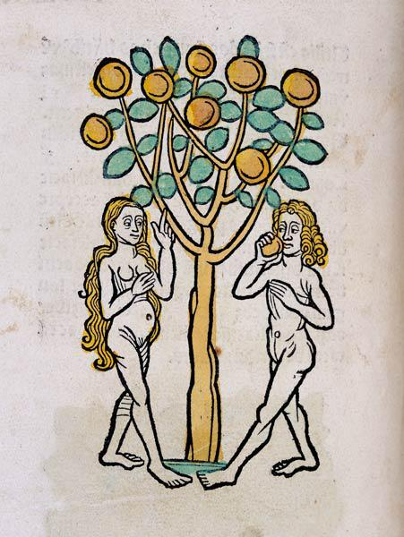Adam and Eve under the Tree of life 1547