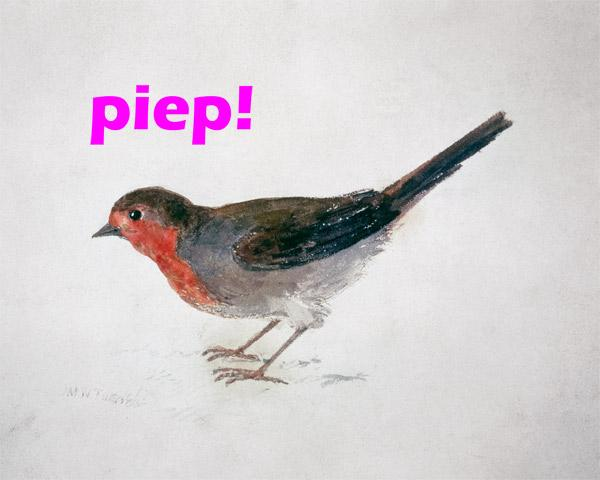 "Robin, from The Farnley Book of Birds  - ""piep!"""