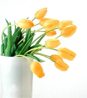 Yellow tulips I, 1999 (colour photo)