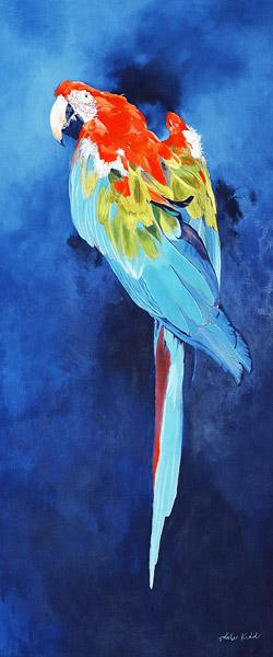 Red and Blue Macaw, 2002 (acrylic on linen)