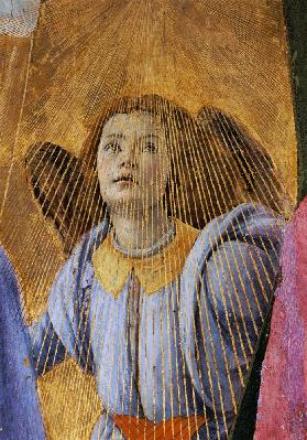 Angel, from the 'Coronation of the Virgin' c.1488-90
