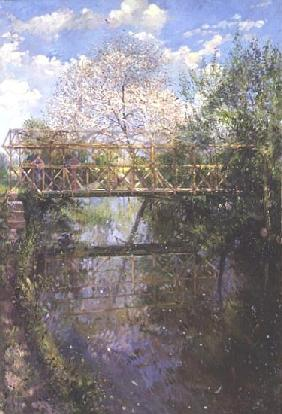 Flowering Cherry and Trellis Bridge