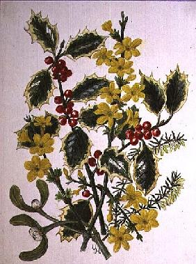 Holly, Winter Jasmine, Heath and Mistletoe (w/c on paper)